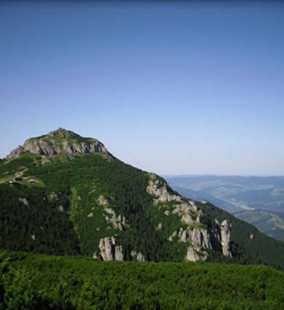 amenajari gradini -muntii Ceahlau 6