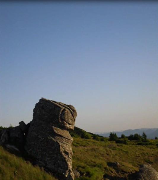 amenajari gradini -muntii Ceahlau 9