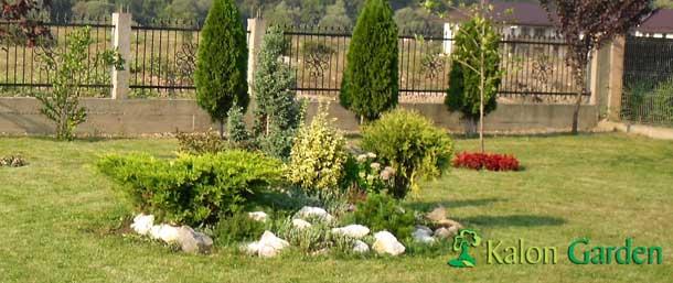 amenajarea gradinii un tablou al naturii