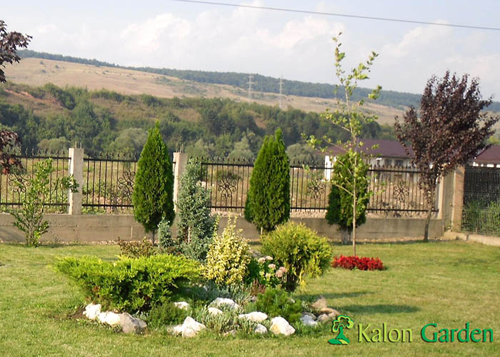 amenajari gradini cu gazon si stancarii Cluj - Prodan