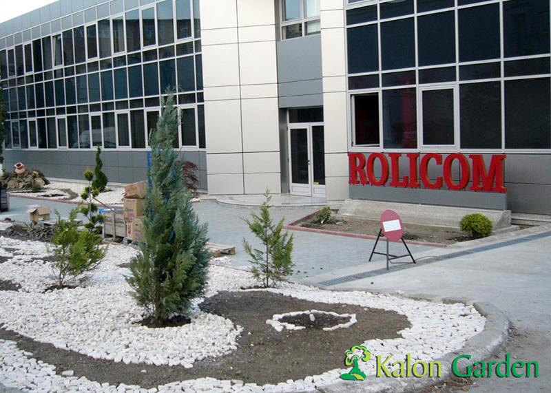 amenajari spatii verzi pt firme Cluj_Rolicom