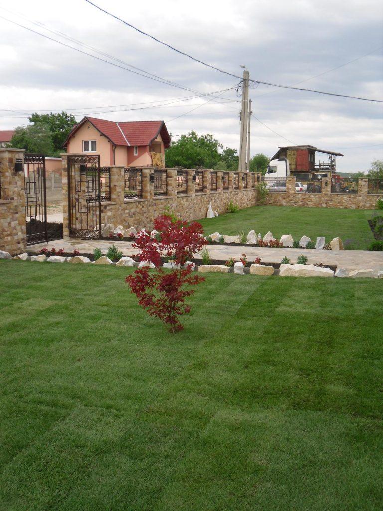 gradina amenajata cu gazon in copaceni